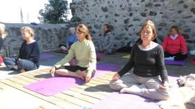 yoga traditionnel stage lou couture shankara santé naturelle psychologie philosophie outils santé relaxation meditation mantra asana hatha detox jus 3 (52)